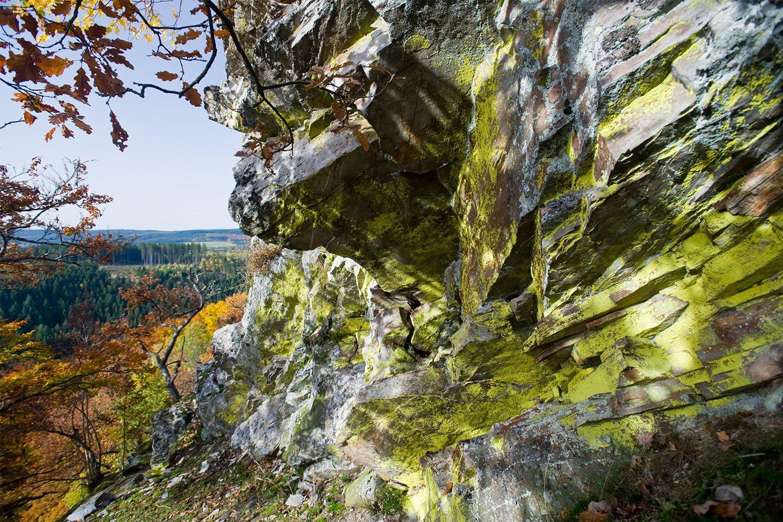 Natur-erleben-Rheinland-Pfalz